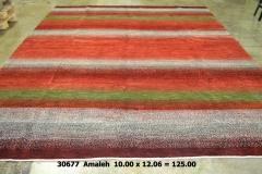 30677 Amaleh  10 x 12.6