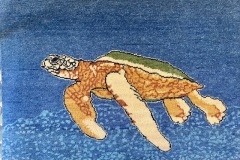 2x3 Single Turtle in water